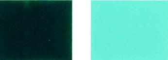 Пигментно-зелено-36-Color